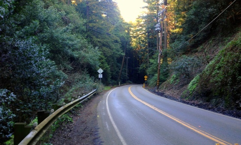 Redwood Road near Grizzly Peak